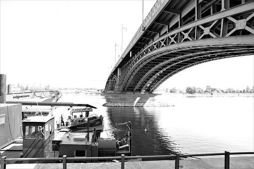 Bridge, River, Theodor Heuss Bridge, Monochrome