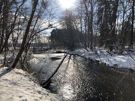 Winter, River, Trees, Snow, Stream, Creek, Water, Bank