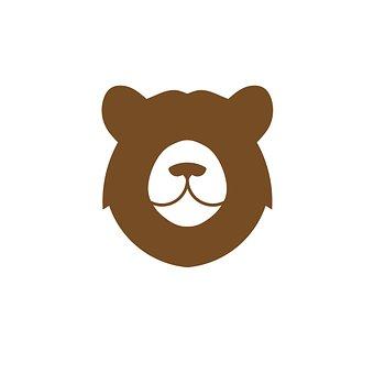 Bear, Head, Polar Bear, Animal, Nature, Mammal, Fur