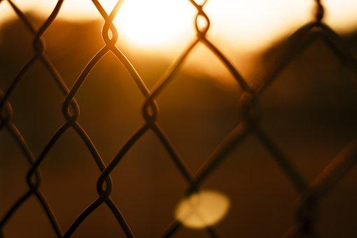 Mesh, Fence, Sunset, Sunrise, Sunlight, Steel Wire