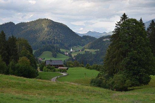 Alpine, Mountains, Nature, Mountain Landscape, Forest