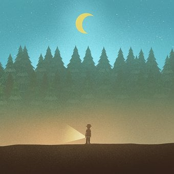 Desert, Man, Moon, Light, Moonlight, Trees, Forest