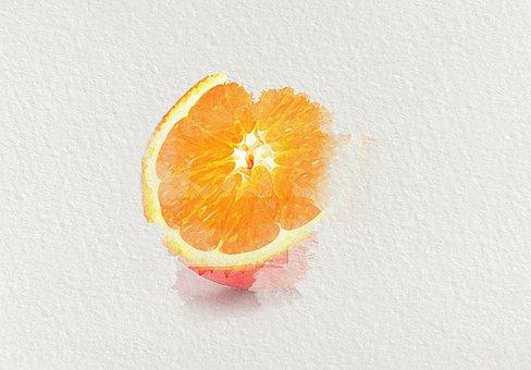 Orange, Fruit, Watercolor, Food, Half, Slice, Citrus