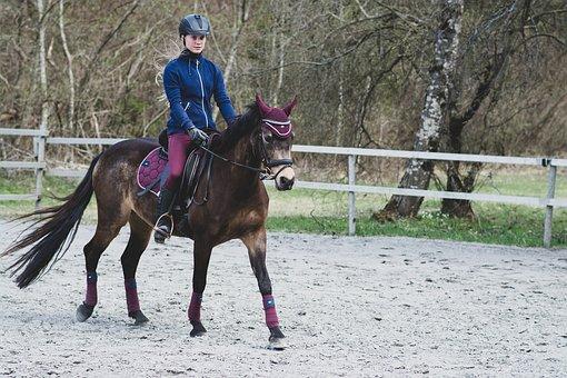 Horsewoman, Reiter, Horse, Pony, Ride, Riding