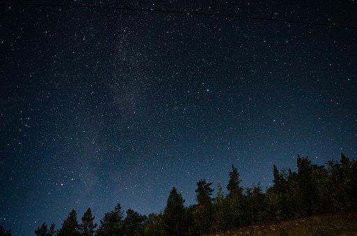 Stars, Sky, Night, Trees, Starry Sky, Starry Night