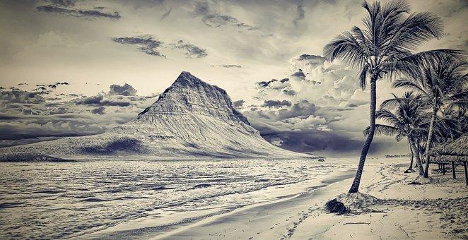 Beach, Mountain, Mountain Beach, Palma, Palm Trees, Bw