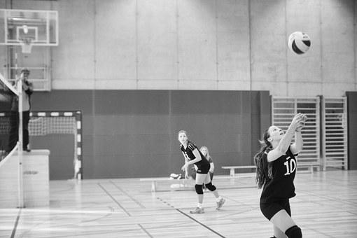 Volleyball, Sport, Ball, Play, Competition, Young