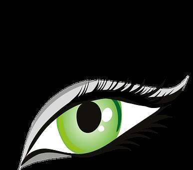 Eye, Green Eyes, Iris, Eyelid, Eyebrows, Brows, Seeing