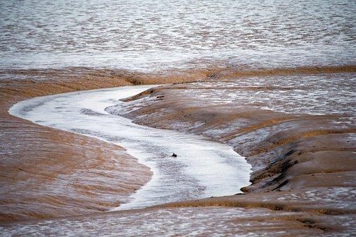 Mud Flats, Eb Tide, Thames Estuary, Uk, Low Tide, Flow
