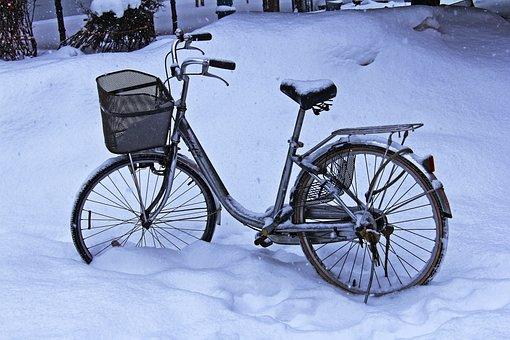 Winter, Snow, Beautiful, Park, Morning, Snow-caped