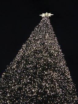 Christmas Tree, Berlin, Decorative, Ku'damm