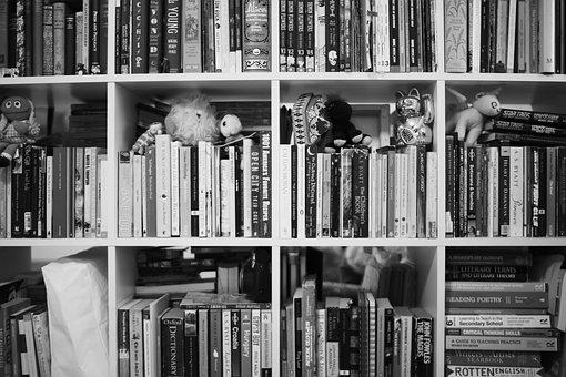 Books, House, Shelf, Home, Reading, Design, Room
