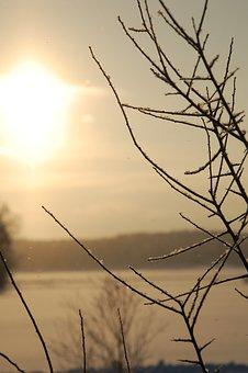 Sunshine, Snowy, Shining, Shiny, Sun, Light, Golden