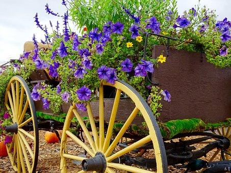 Flowers, Wagon, Pumpkin, Decoration, Wheel