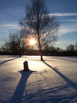 Winter, Snow, Footprints, White, Cold, Wintry