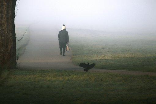 Morning Mist, Fog, Cold, Person, Alone, Landscape, Haze