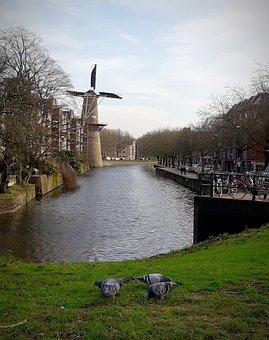 Windmill, City, Channel, Pigeons, Park, Schiedam, Doves