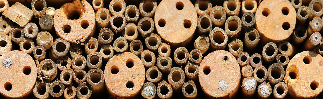 Bamboo, Holes, Stack, Woods, Pile, Texture, Pattern