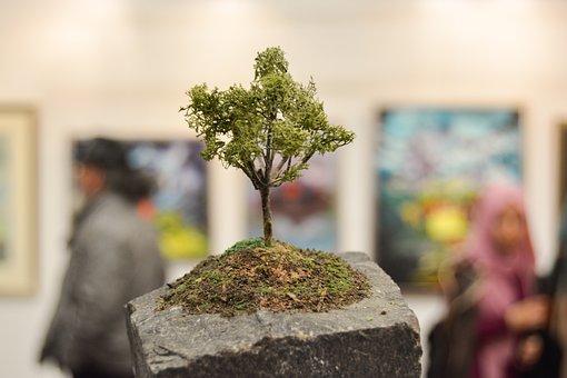 Miniature, Tree, Little, Plant, Nature, Green, Garden