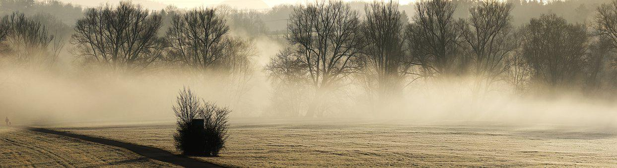 Trees, Silhouettes, Fog, Panorama, Panoramic