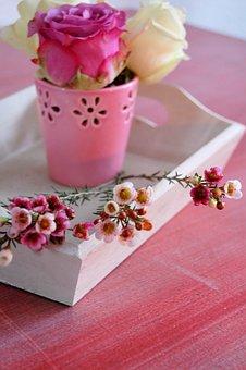 Flower Vase, Vase, Decoration, Deco, Spring, Flora