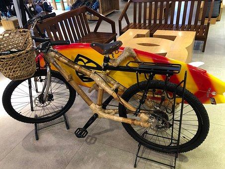 Bamboo, Bicycle, Manila, Transportation, Cycling