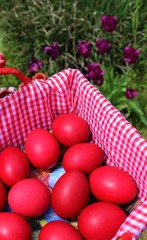 Flowers, Eggs, Basket, Easter, Season, Nature, April