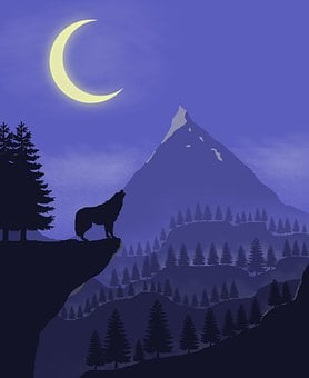 Wolf, Howling, Night, Howl, Silhouette, Crescent, Moon