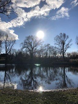 Lake, Trees, Silhouettes, Backlighting