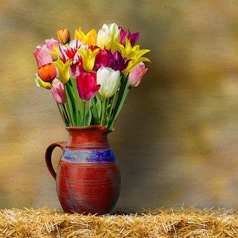 Tulips, Vase, Still Life, Flowers, Colorful Tulips