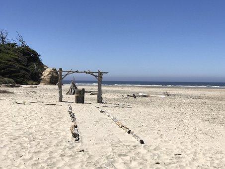 Driftwood, Aisle, Beach, Sand, Shore, Seashore