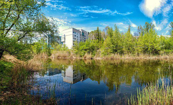 River, Reeds, Bank, Buildings, Reflection