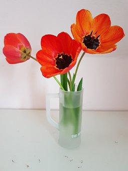 Tulips, Flowers, Vase, Flower Vase, Petals, Bloom
