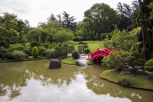 Garden, Pond, Bridge, Water, Reflection, Park, Plants