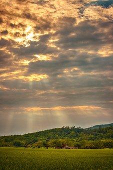 Rice Field, Mountain, Sky, Sunlight, Clouds, Field