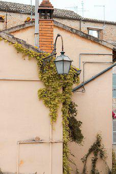 Building, Wall, Vines, Lamp, Lantern, Plant, Old