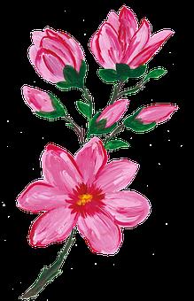 Magnolia, Spring, Spring Flower, Watercolor