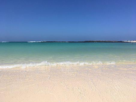 Beach, Fuerteventura, Island, Paradise, Summer