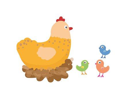 Hen, Nest, Chicks, Chicken, Birds