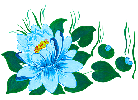 Waterlily, Waterlilies, Water Flower, Water Lily, Lily