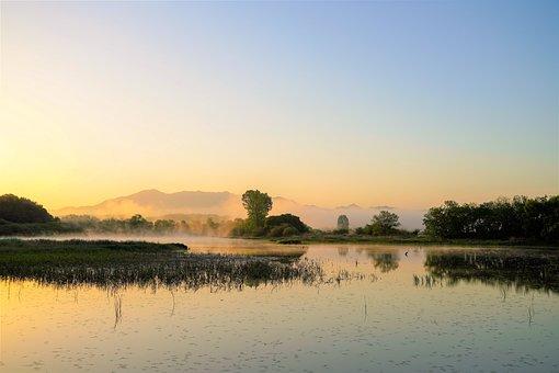 Morning, Landscape, Woopu Swamp, Sunrise, Fog, Nature