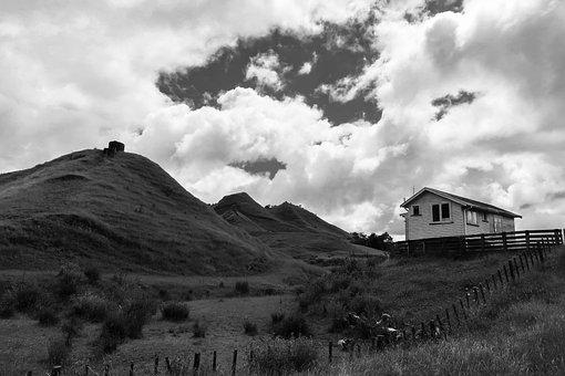 Rural, Waikato, New Zealand, Nature, Landscape, Travel
