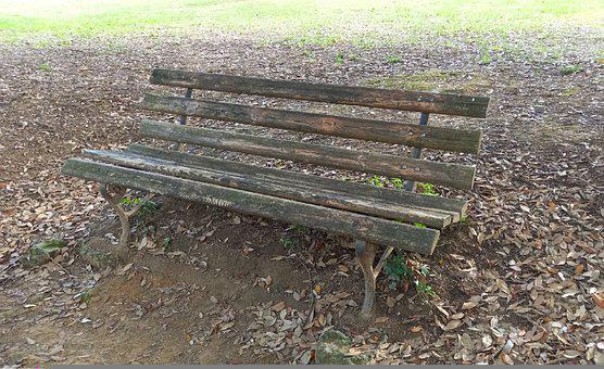 Bench, Chair, Park, Seat, Wooden Bench, Leaves