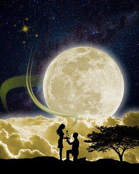 Valentine's Day, Love, Heart, Romantic, Flower, Nature