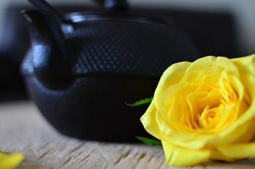 Rose, Yellow, Tea Pot, Flower, Flora, Romantic, Beauty
