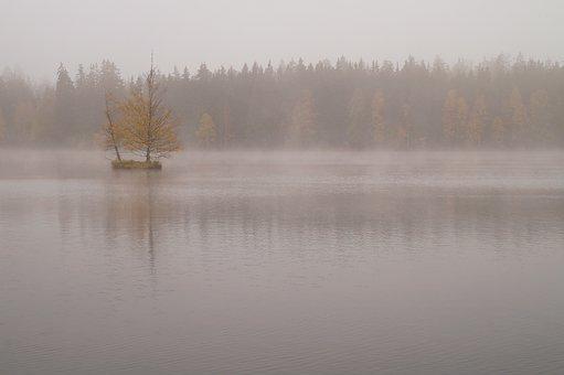Lake, Bog, Moor, Island, Nature, Moorland, Mirroring