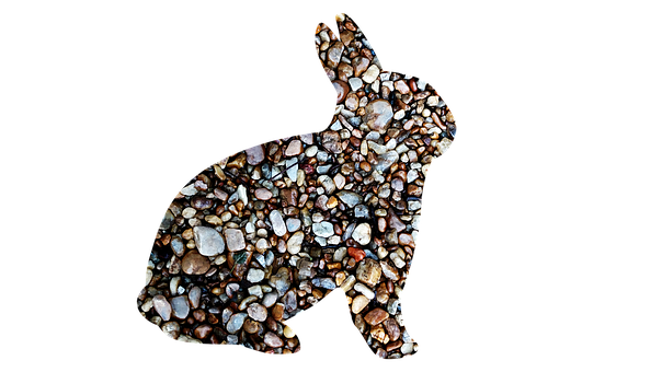 Rabbit, Rocks, Pebbles, Hare, Animal, Wildlife, Stones
