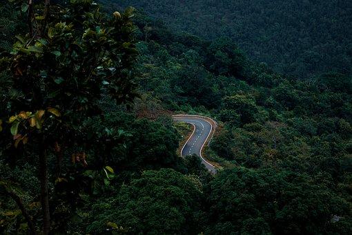 Road, Mountain, Forest, Travel, Destination