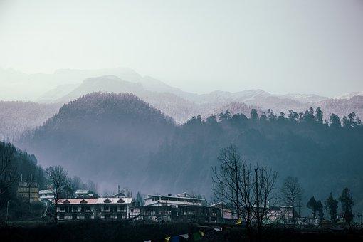 Mountain, Forest, Travel, Destination