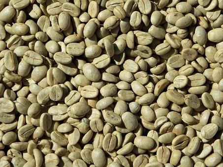 Green Coffee, Coffee Beans, Coffee, Arabica, Costa Rica
